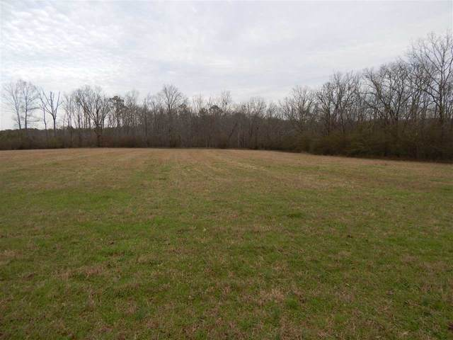 off County Road 352, Fyffe, AL 35971 (MLS #1137642) :: Capstone Realty