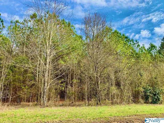 Lot 3 John Hicks Road, Hazel Green, AL 35750 (MLS #1137646) :: Capstone Realty