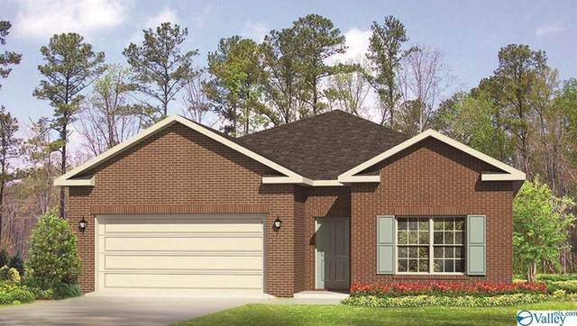 105 Pick Sack Lane, Huntsville, AL 35811 (MLS #1137860) :: Amanda Howard Sotheby's International Realty