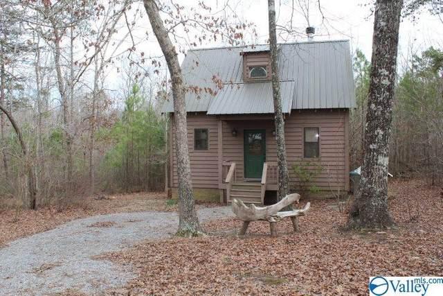 3462 County Road 106, Mentone, AL 35984 (MLS #1137900) :: Capstone Realty