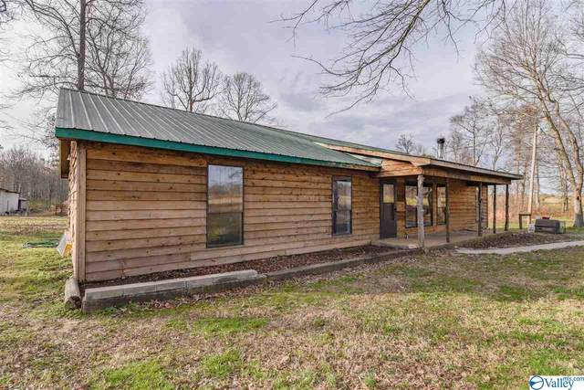 245 County Road 1595, Baileyton, AL 35019 (MLS #1137915) :: Amanda Howard Sotheby's International Realty
