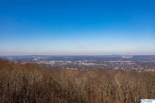 1112 Monte Sano Blvd, Huntsville, AL 35801 (MLS #1137980) :: The Pugh Group RE/MAX Alliance