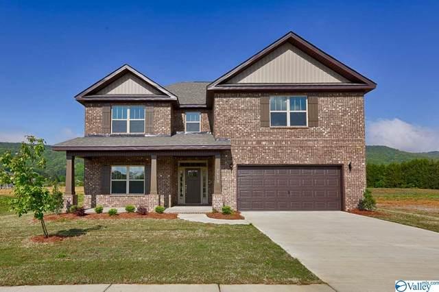 231 Holt Street, Meridianville, AL 35759 (MLS #1138258) :: Capstone Realty