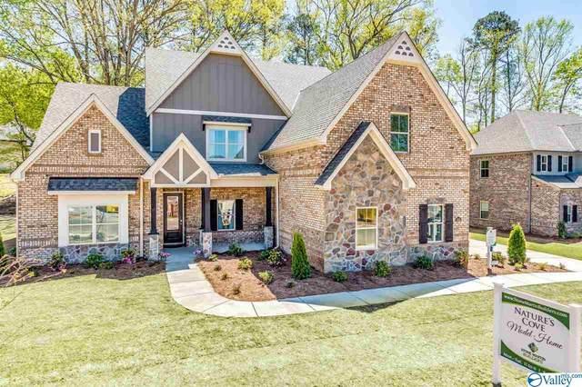 130 Creekmound Drive, Huntsville, AL 35806 (MLS #1138268) :: Capstone Realty
