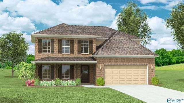 193 Wilcot Road, Meridianville, AL 35759 (MLS #1138618) :: Capstone Realty