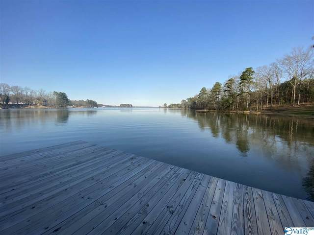 735 County Road 20, Leesburg, AL 35983 (MLS #1138872) :: Weiss Lake Alabama Real Estate