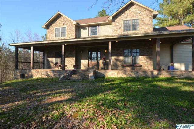 4590 County Road 616, Hanceville, AL 35077 (MLS #1138943) :: Capstone Realty