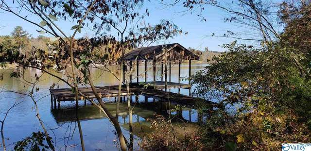 10 River Run Lane, Cedar Bluff, AL 35959 (MLS #1138979) :: The Pugh Group RE/MAX Alliance
