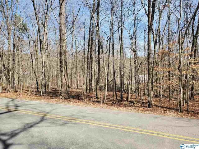 00000 County Road 89, Mentone, AL 35984 (MLS #1139102) :: Weiss Lake Alabama Real Estate