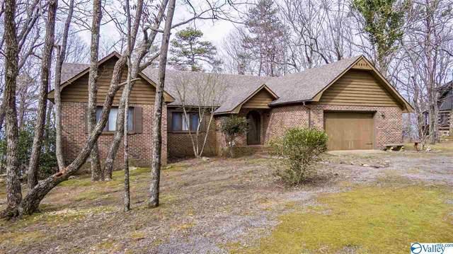 16295 County Road 89, Mentone, AL 35984 (MLS #1139408) :: Weiss Lake Alabama Real Estate
