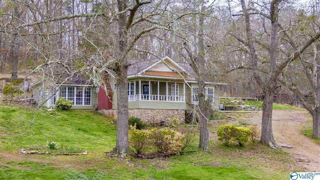 51 County Road 891, Collinsville, AL 35961 (MLS #1139697) :: Weiss Lake Alabama Real Estate