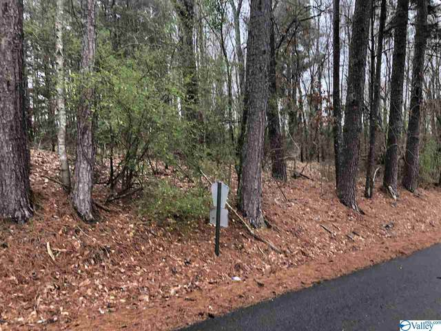 0 County Road 310, Crane Hill, AL 35053 (MLS #1139787) :: Capstone Realty