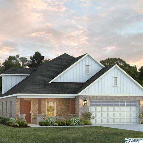 2510 Celia Court, Huntsville, AL 35803 (MLS #1140120) :: Capstone Realty