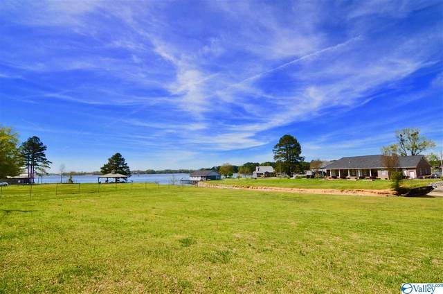 0 Spring Drive, Southside, AL 35907 (MLS #1140284) :: Weiss Lake Alabama Real Estate