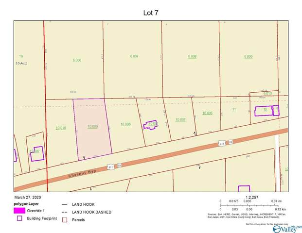 Lot 7 Chesnut Bypass, Centre, AL 35960 (MLS #1140333) :: Weiss Lake Alabama Real Estate