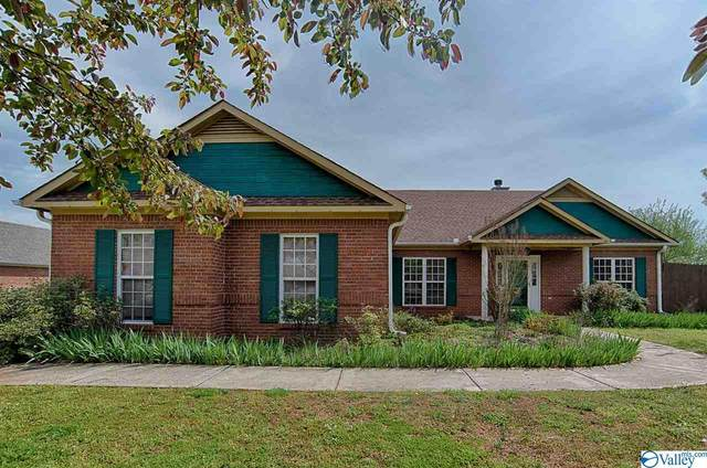 113 Tree Bark Trail, Hazel Green, AL 35750 (MLS #1140383) :: Capstone Realty