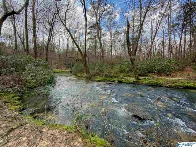 3900 Hickory Road, Ider, AL 35981 (MLS #1140568) :: Weiss Lake Alabama Real Estate