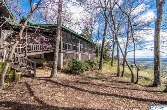540 County Road 848, Mentone, AL 35984 (MLS #1140732) :: Weiss Lake Alabama Real Estate