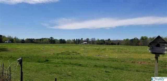 2200 County Road 667, Henagar, AL 35978 (MLS #1140829) :: RE/MAX Distinctive | Lowrey Team