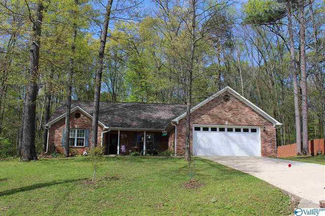 197 Raspberry Way, Madison, AL 35757 (MLS #1140892) :: Amanda Howard Sotheby's International Realty