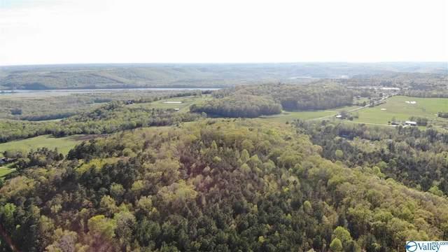 Merrill Mountain  Circle, Guntersville, AL 35976 (MLS #1141031) :: Capstone Realty