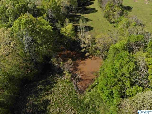 Hembree Drive, Guntersville, AL 35976 (MLS #1141033) :: Capstone Realty