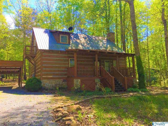 267 Road 911, Fort Payne, AL 35967 (MLS #1141262) :: Amanda Howard Sotheby's International Realty