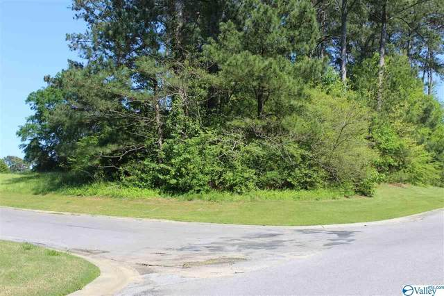 0 Willi LN County Road 1307, Vinemont, AL 35179 (MLS #1141665) :: RE/MAX Unlimited
