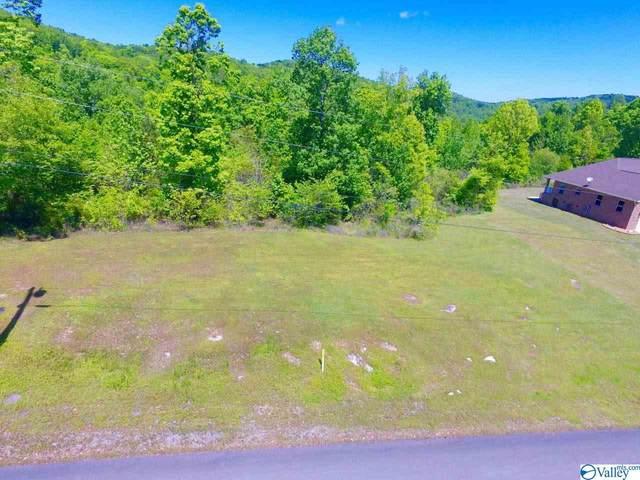 36 Tara Drive, Guntersville, AL 35976 (MLS #1141889) :: LocAL Realty