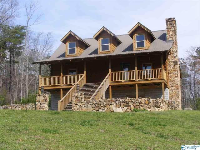 109 County Road 9080, Mentone, AL 35984 (MLS #1143041) :: Capstone Realty