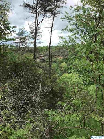 0 County Road 863, Gaylesville, AL 35973 (MLS #1143139) :: Capstone Realty