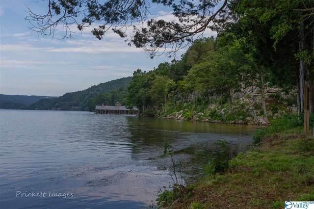 13 Reserve Drive, Guntersville, AL 35976 (MLS #1143178) :: Amanda Howard Sotheby's International Realty