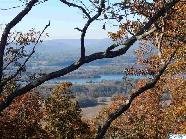 4488D County Road 81, Flat Rock, AL 35966 (MLS #1143274) :: Amanda Howard Sotheby's International Realty