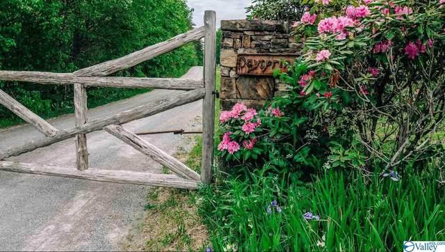 County Road 165, Mentone, AL 35984 (MLS #1143319) :: Amanda Howard Sotheby's International Realty