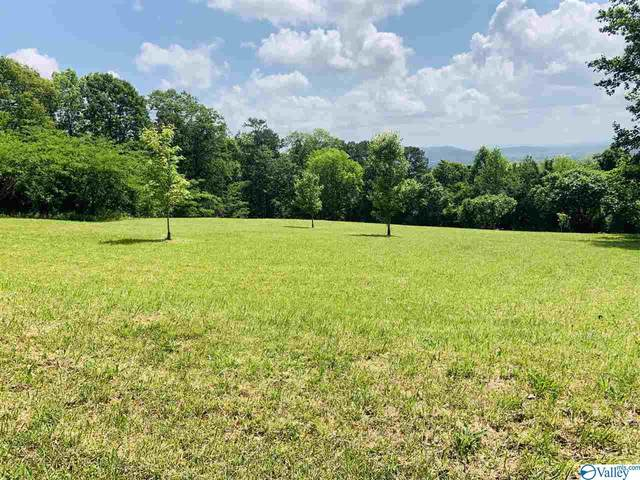 0 Scenic Drive, Gadsden, AL 35904 (MLS #1143915) :: Revolved Realty Madison