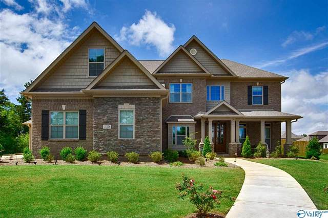 130 Pine Willow Circle, Madison, AL 35758 (MLS #1144246) :: The Pugh Group RE/MAX Alliance