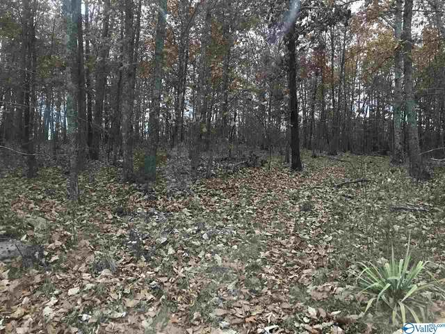 001 County Road 354, Collinsville, AL 35961 (MLS #1144383) :: Capstone Realty