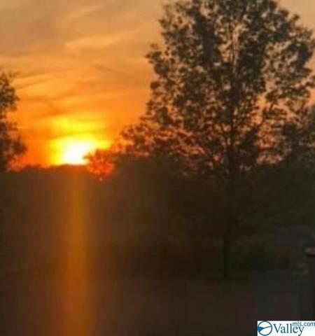 400 Bluff Drive, Hartselle, AL 35640 (MLS #1144772) :: Legend Realty