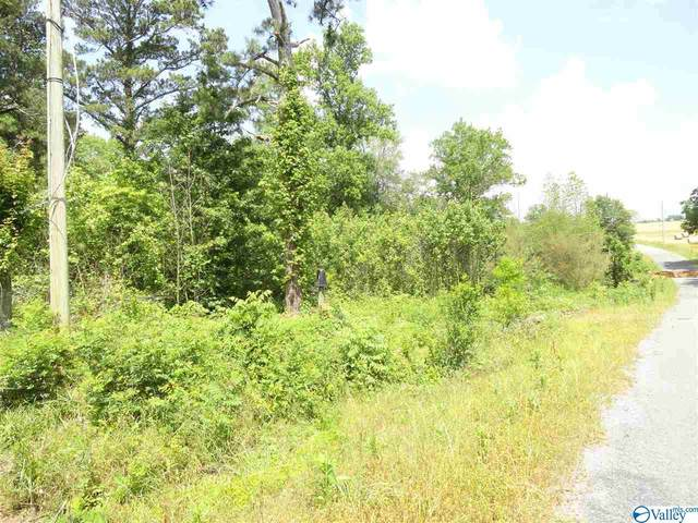 860 County Road 360, Albertville, AL 35950 (MLS #1144979) :: Legend Realty