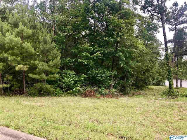 23 Azalea Trail, Centre, AL 35960 (MLS #1145456) :: LocAL Realty