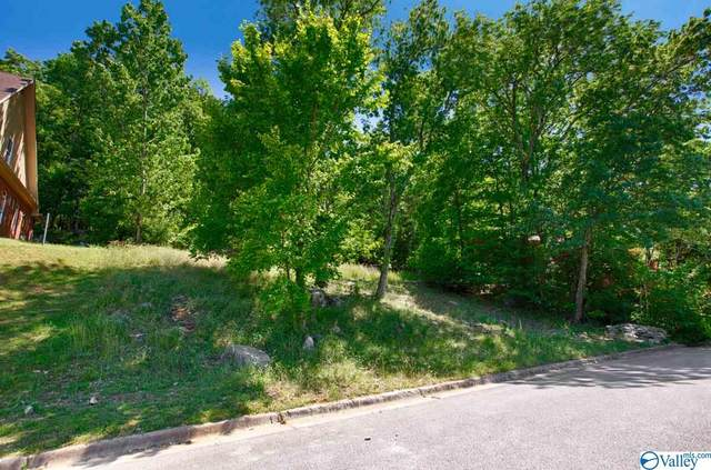 3040 Box Canyon Road, Huntsville, AL 35803 (MLS #1145800) :: Southern Shade Realty