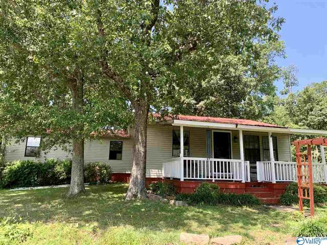 110 County Road 481, Collinsville, AL 35961 (MLS #1145809) :: Capstone Realty