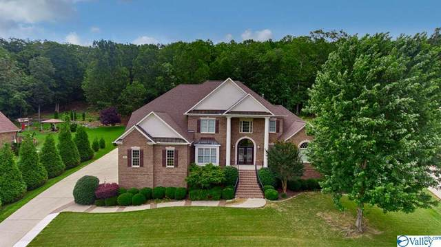 245 Wedgewood Terrace Road, Madison, AL 35749 (MLS #1146408) :: Amanda Howard Sotheby's International Realty