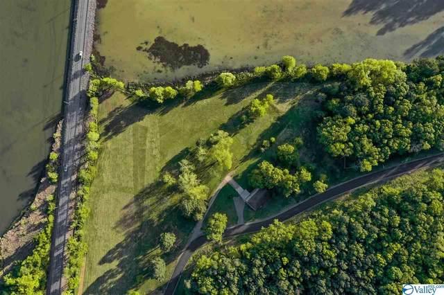 Lot 20 Lakelands Cove Road, Guntersville, AL 35976 (MLS #1146409) :: Rebecca Lowrey Group
