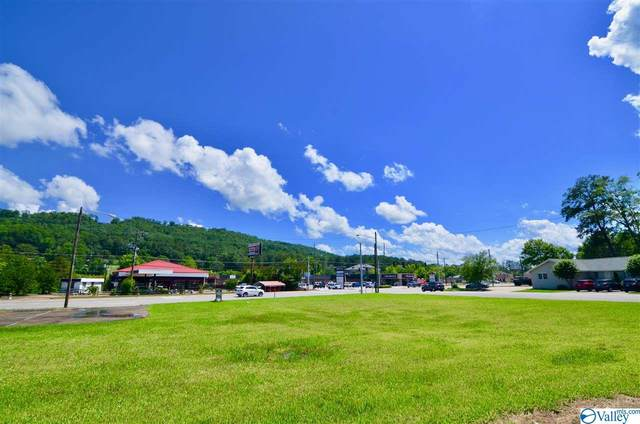 1 Rainbow Drive, Gadsden, AL 35901 (MLS #1146480) :: MarMac Real Estate