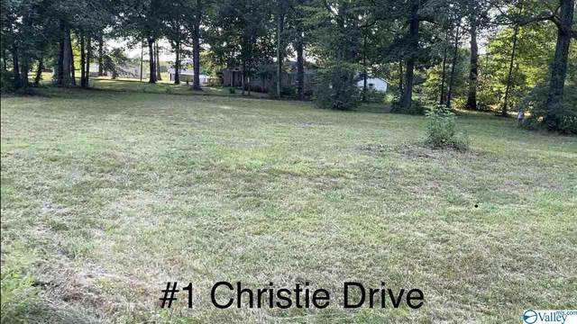 01 Christie Drive, Toney, AL 35773 (MLS #1146963) :: Coldwell Banker of the Valley