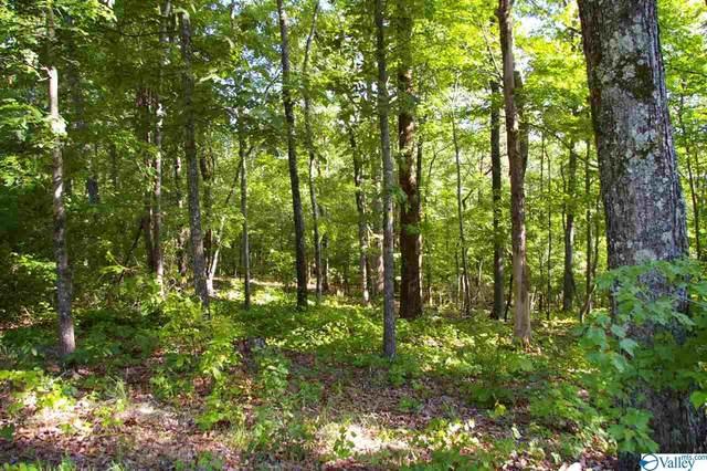 00 Rivermont Bend, Somerville, AL 35670 (MLS #1147230) :: RE/MAX Distinctive | Lowrey Team