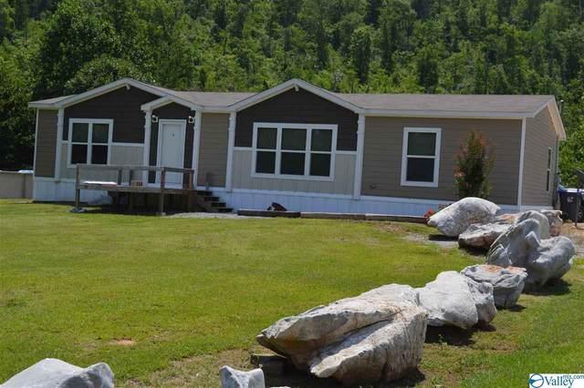490 Happy Hollow Road, Glencoe, AL 35905 (MLS #1147414) :: Capstone Realty