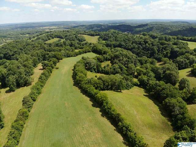 TRACT 2 Red Hill Road, Taft, TN 38488 (MLS #1147427) :: Capstone Realty