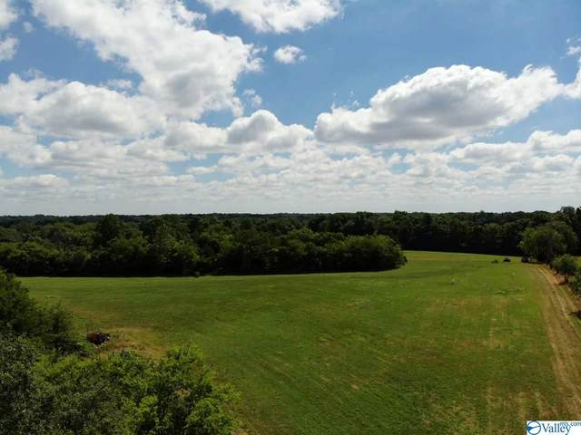 Tract 4 Red Hill Road, Taft, TN 38488 (MLS #1147428) :: Capstone Realty